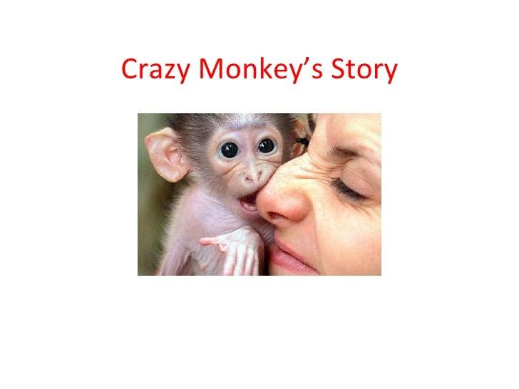 Crazy Monkey's Story