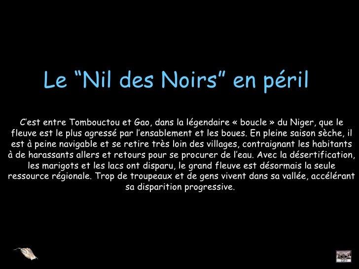 """Le """"Nil des Noirs"""" en péril   C'est entre Tombouctou et Gao, dans la légendaire « boucle » du Niger, que le fleuve est le ..."""