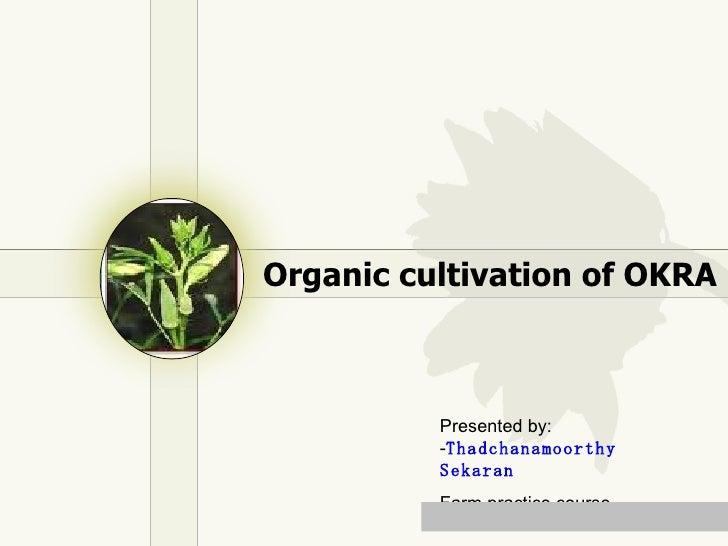 Organic cultivation of OKRA Presented by: - Thadchanamoorthy Sekaran Farm practice course