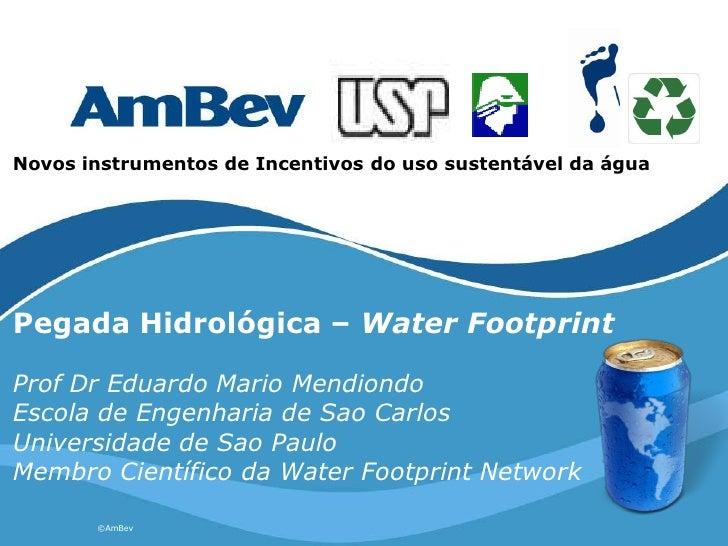 Novos instrumentos de Incentivos do uso sustentável da água     Pegada Hidrológica – Water Footprint  Prof Dr Eduardo Mari...