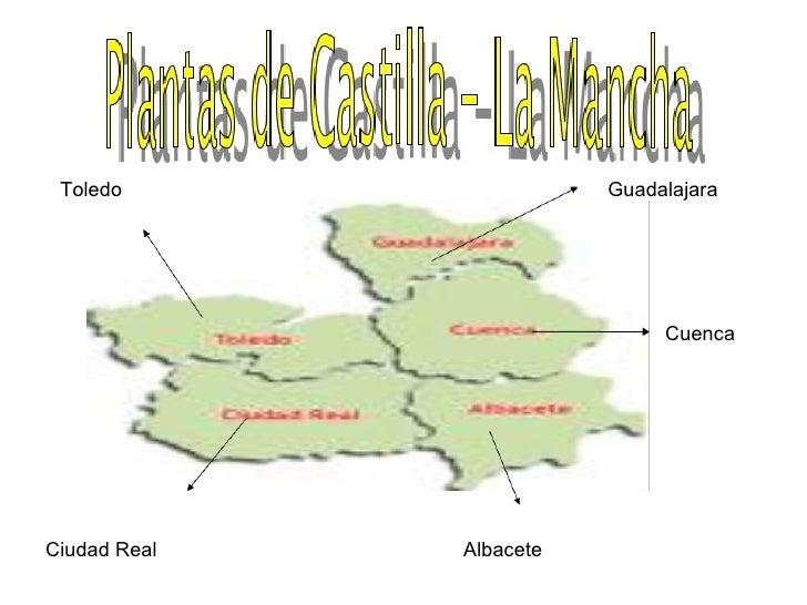 Guadalajara Toledo Ciudad Real Albacete Cuenca
