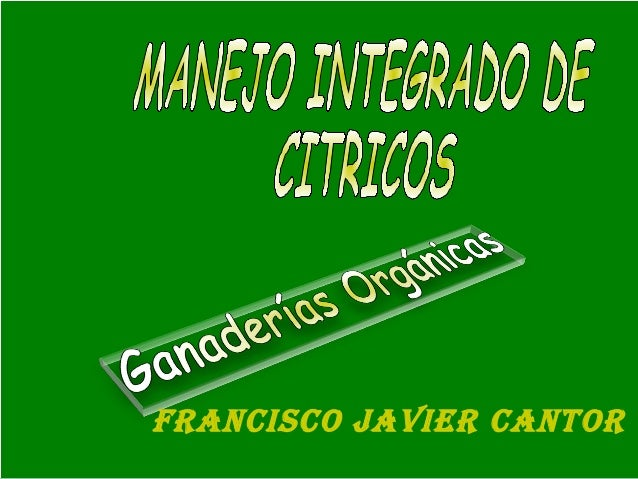 Francisco Javier cantor