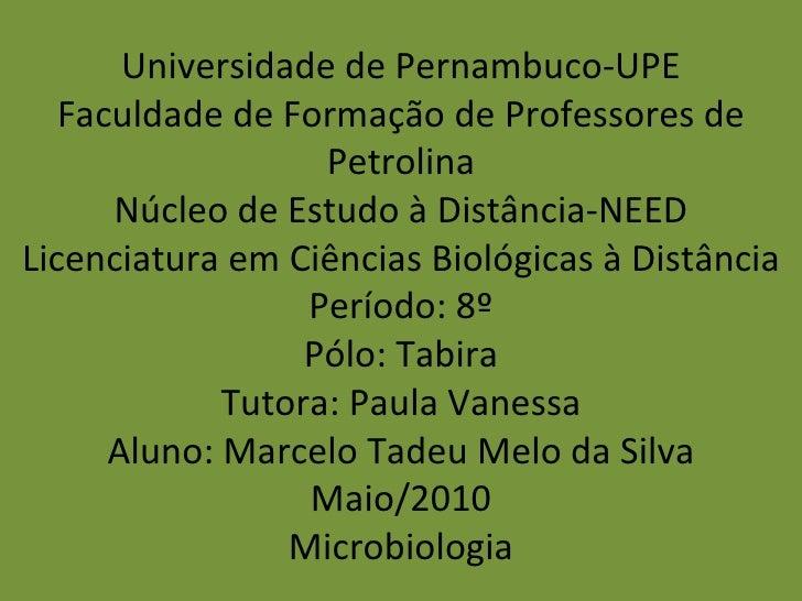 Universidade de Pernambuco-UPE Faculdade de Formação de Professores de Petrolina Núcleo de Estudo à Distância-NEED Licenci...