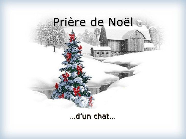 Prière de Noël … d'un chat…
