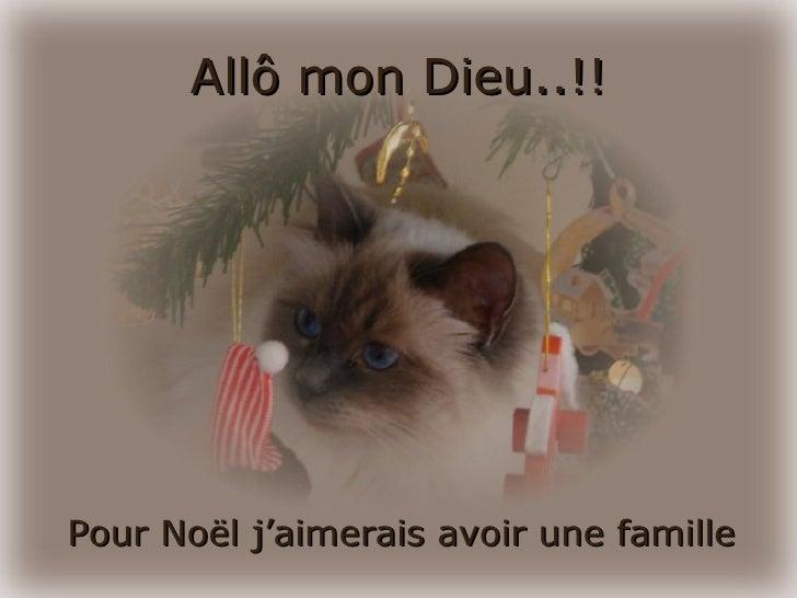 Prière de Noel d'un chat Slide 2