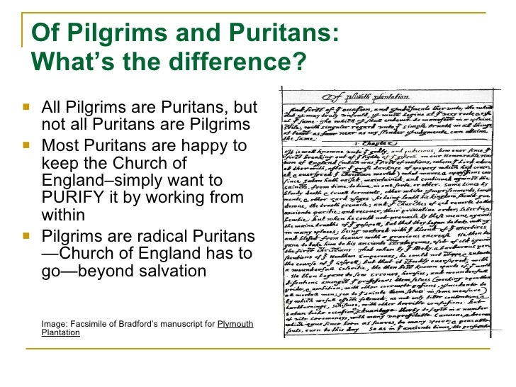what is the difference between separatists pilgrims and puritans What is the difference between the pilgrims and puritans a:  they were called separatists and considered an extremist  difference between pilgrims and puritans.