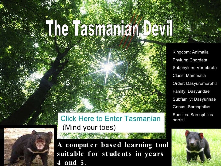 The Tasmanian Devil Click Here to Enter Tasmanian Devil Zone  (Mind your toes) A computer based learning tool suitable for...