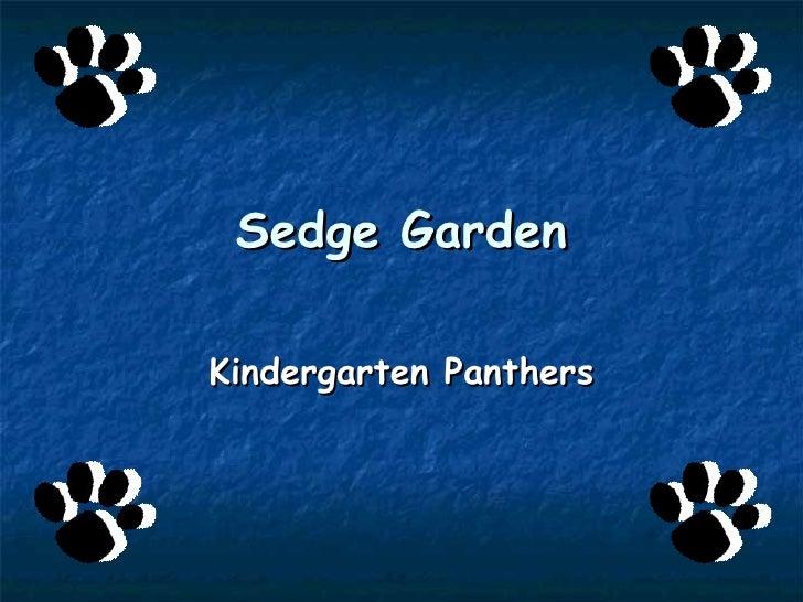 Sedge Garden Kindergarten Panthers