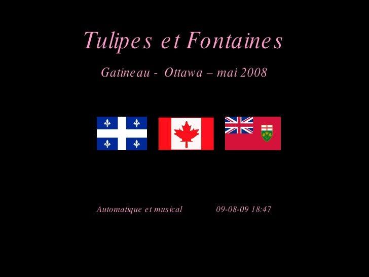 Tulipes et Fontaines Gatineau -   Ottawa – mai 2008 Automatique et musical  09-08-09   18:47