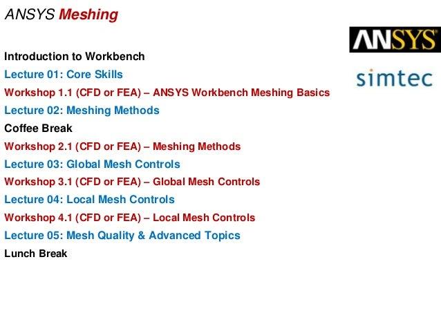 workbench meshing