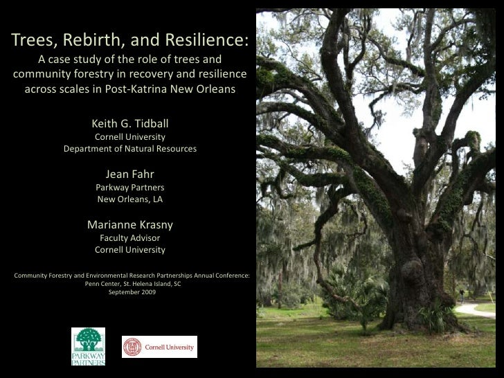 Trees, Rebirth, and Resilience:<br />A case study of the role of trees and community forestry in recovery and resilience a...