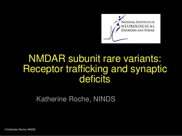 NMDAR subunit rare variants: Receptor trafficking and synaptic deficits Katherine Roche, NINDS © Katherine Roche, NINDS