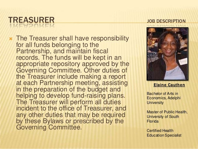 Treasurer Job Description