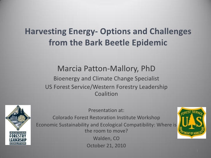 Harvesting Energy- Options and Challenges     from the Bark Beetle Epidemic           Marcia Patton-Mallory, PhD        Bi...