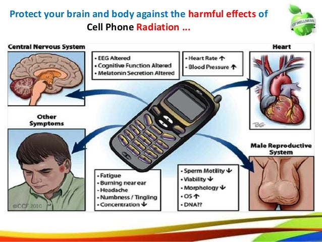 Cell Phone Use May Lead to Harmful Effects in Children