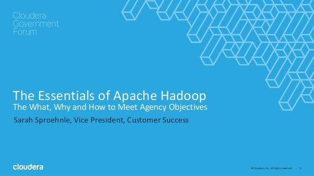 Pro Hadoop Pdf