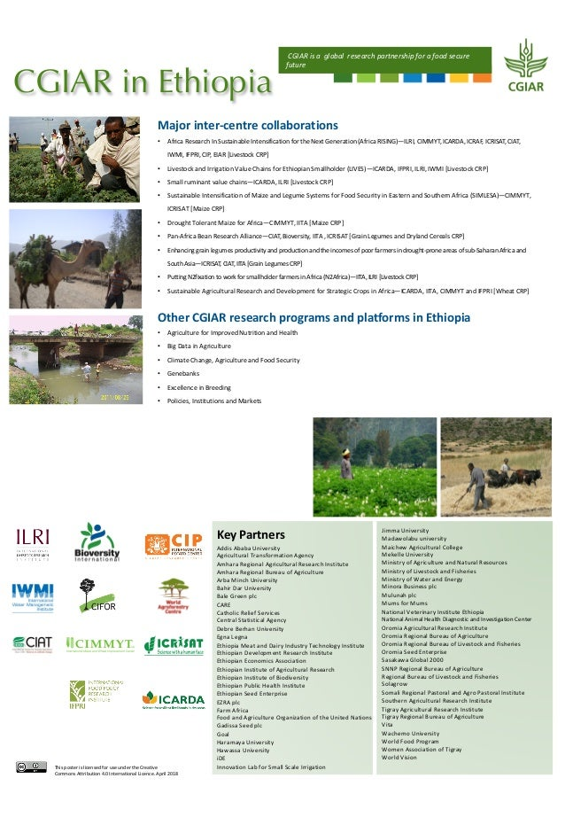 CGIAR in Ethiopia Key Partners Addis Ababa University Agricultural Transformation Agency Amhara Regional Agricultural Rese...