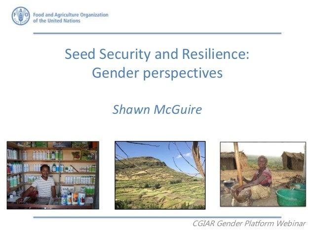 Seed Security and Resilience: Gender perspectives Shawn McGuire CGIAR Gender Platform Webinar
