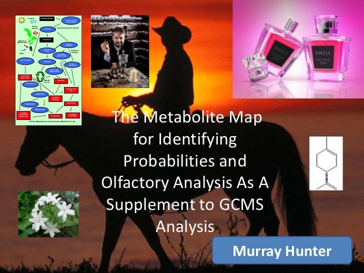 The Metabolite Map for Identifying Probabilities and Olfactory Analysis As A Supplement to GCMS Analysis <br />Murray Hun...