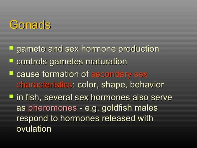hormones that affect secondary sex characteristics male in Waterloo