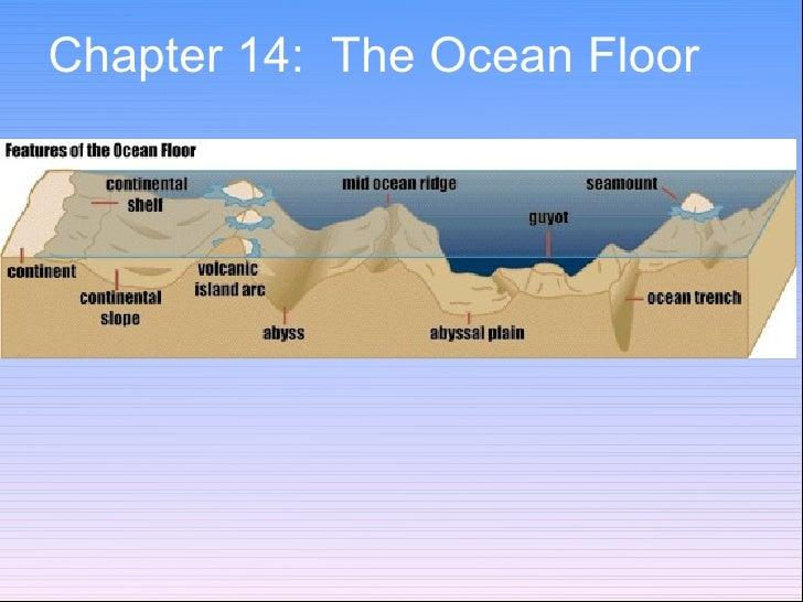 Chapter 14:  The Ocean Floor