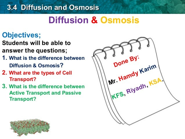 diffusion and osmosis essay question What's the difference between diffusion and osmosis osmosis is the result of diffusion across a semipermeable membrane if two solutions of different concentration are separated by a semipermeable membrane, then the solvent will tend to diffuse across the membrane from the less concentrated to the more conc.