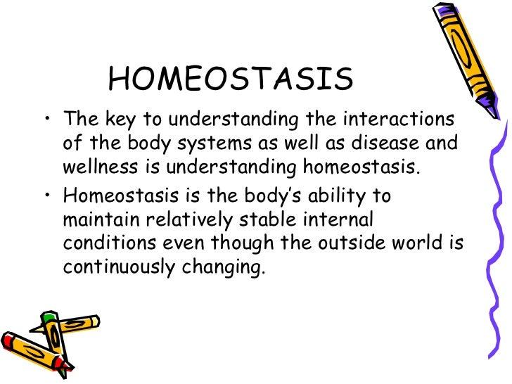 Anatomy ch 1 Homework Service hotermpapernhlh.poslovnadogadanja.info