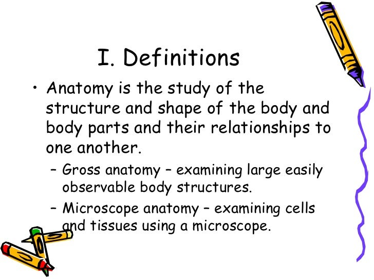 anatomy ch 1 Study anatomy ch 1 flashcards at proprofs - anatomy flash cards for chapter one.