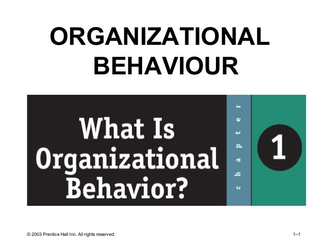 © 2003 Prentice Hall Inc. All rights reserved. 1–1 ORGANIZATIONAL BEHAVIOUR