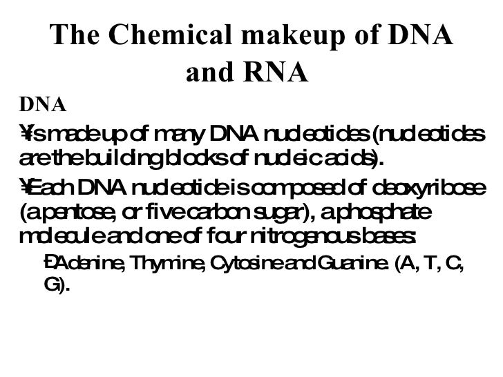 The Chemical makeup of DNA and RNA   <ul><li>DNA   </li></ul><ul><li>is made up of many DNA nucleotides (nucleotides are t...