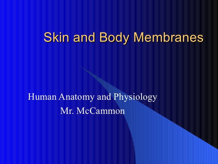 Skin and Body Membranes    Human Anatomy and Physiology       Mr. McCammon