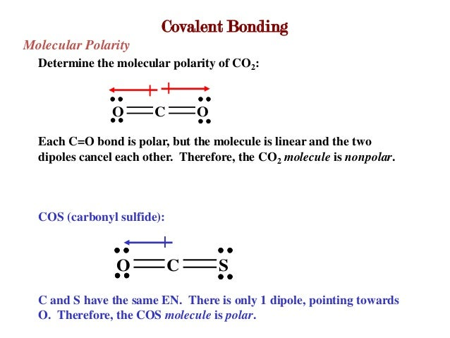 Ch. 4 lecture Nonpolar Covalent Bond Examples