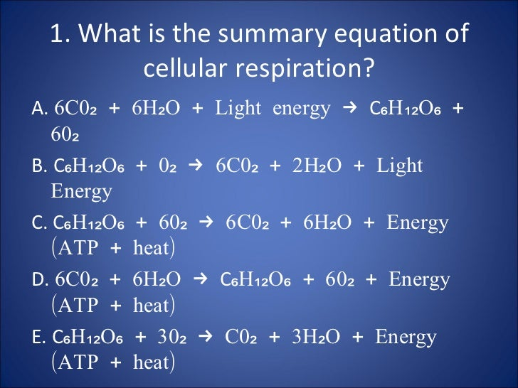 1. What is the summary equation of cellular respiration? <ul><li>A.  6C0₂ + 6H₂O + Light energy ->  C ₆H₁₂O₆ + 60₂ </li></...