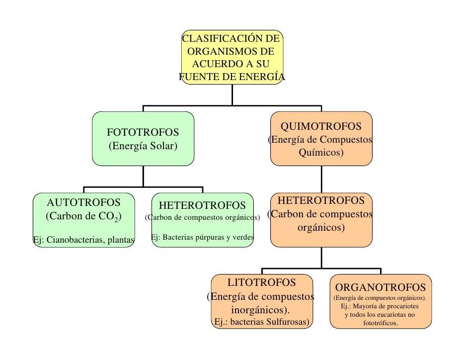 Ch02 Celula 2010