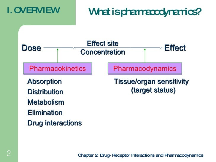 drug receptor interactions review The chemical forces in drug-receptor interactions include electrostatic forces, van der waal forces,.