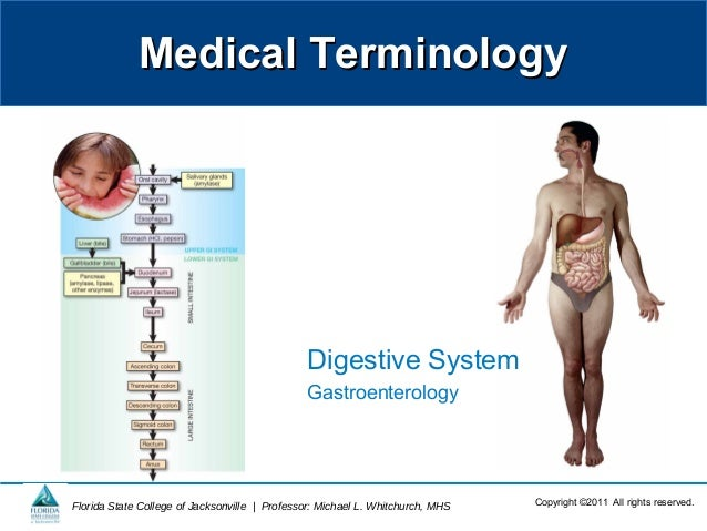 Medical TerminologyMedical TerminologyCopyright ©2011 All rights reserved.Florida State College of Jacksonville   Professo...