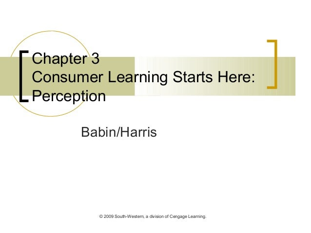 © 2009 South-Western, a division of Cengage Learning. Chapter 3 Consumer Learning Starts Here: Perception Babin/Harris
