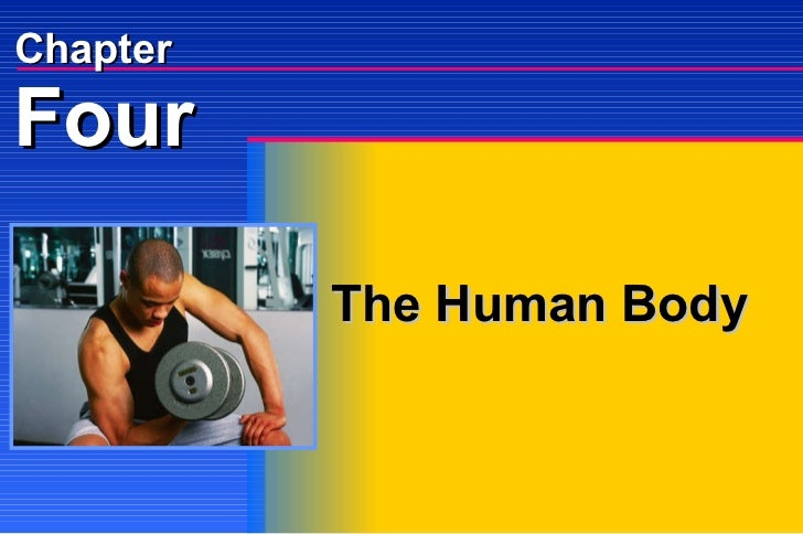 The Human Body Four Chapter