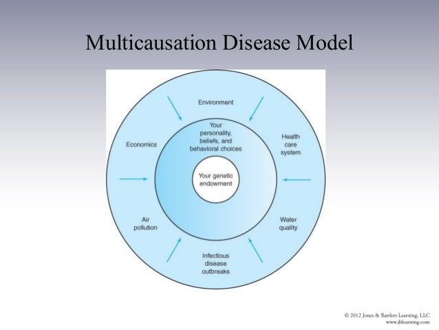multicausation disease model Ch04 outline