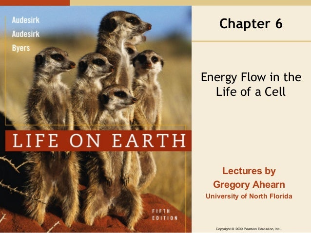 Chapter 6  Energy Flow in the Life of a Cell  Lectures by Gregory Ahearn University of North Florida  Copyright © 2009 Pea...
