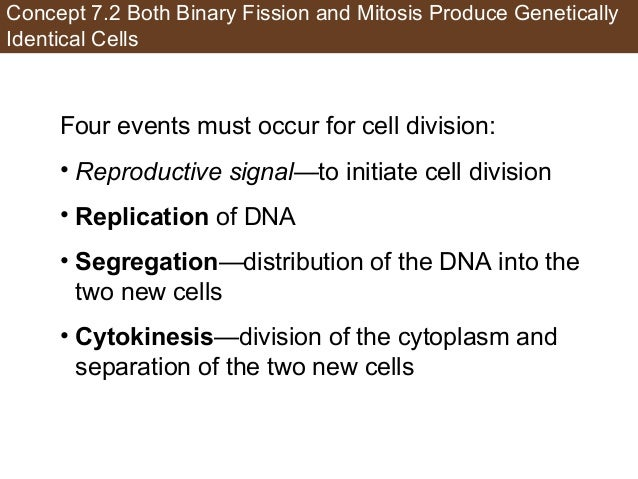 Concept 7.2 Both Binary Fission and Mitosis Produce Genetically Identical Cells Four events must occur for cell division: ...