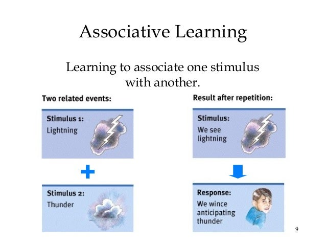 associative learner Associative learning and behavior associative learning is a form of conditioning, a theory that states behavior can be modified or learned based on a stimulus and a response this means that behavior can be learned or unlearned based on the response it generates.