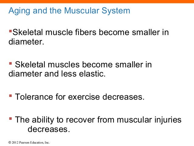 the aging musculoskeletal system The musculoskeletal research center promotes research & education on  common  mass) and foot disorders, as well as biomechanics of the skeletal  system.
