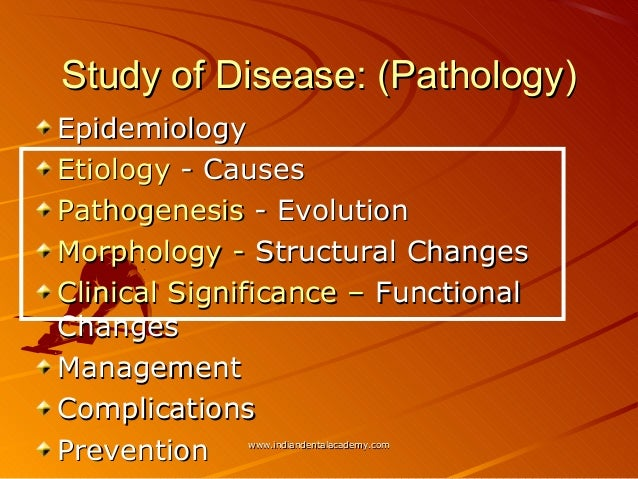 How To Write A High School Essay An Analysis Of The Bubonic Plague In Pathology And Epidemiology Term Paper Essays also Essay Good Health An Analysis Of The Bubonic Plague In Pathology And Epidemiology  Health Essays