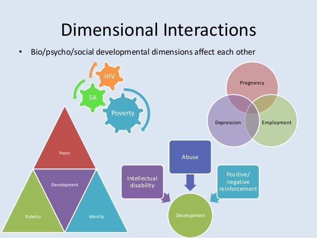 interactions between the bio psycho social dimensions of development