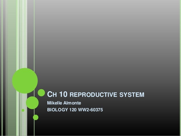CH 10 REPRODUCTIVE SYSTEM Mikelle Almonte BIOLOGY 120 WW2-60375