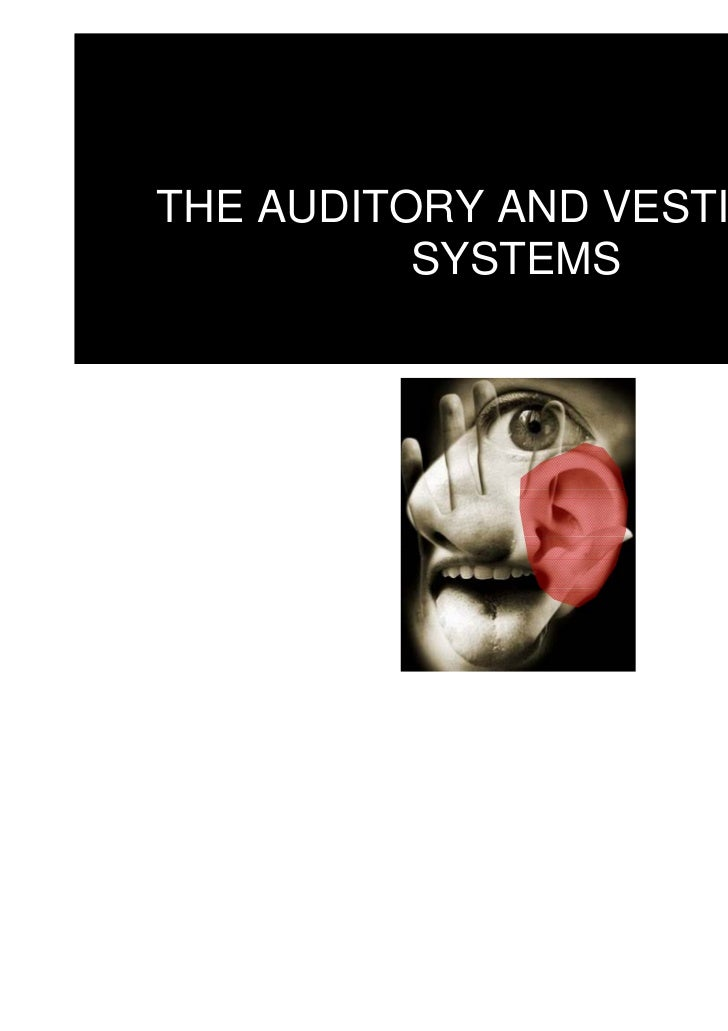 THE AUDITORY AND VESTIBULAR          SYSTEMS