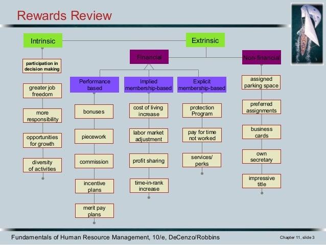 Establishing rewards and pay plans
