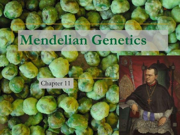 Mendelian Genetics<br />Chapter 11<br />