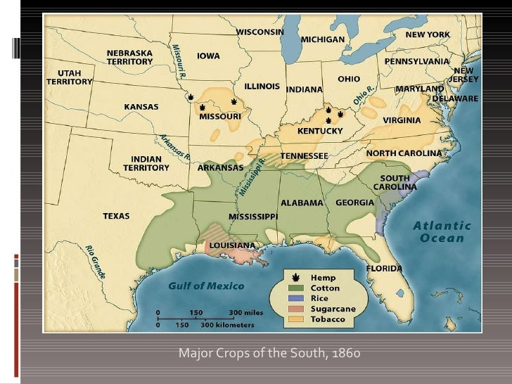 slavery in old south essay Essay about slavery: american civil war and slavery economics, and culture of slavery both in the white house and in the supreme court and the outrageous differences in opinions the north and south had the civil war was in fact inevitable.